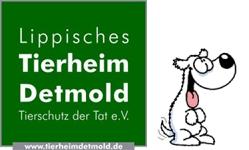 Tierheim Detmold
